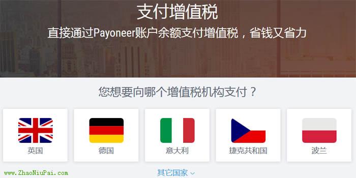 Payoneer可免费缴费VAT税费