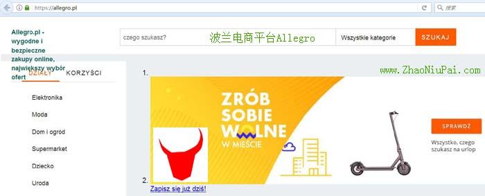 波兰电商平台Allegro