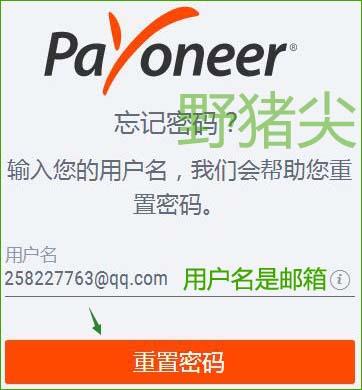 输入Payoneer登录用户名(邮箱)