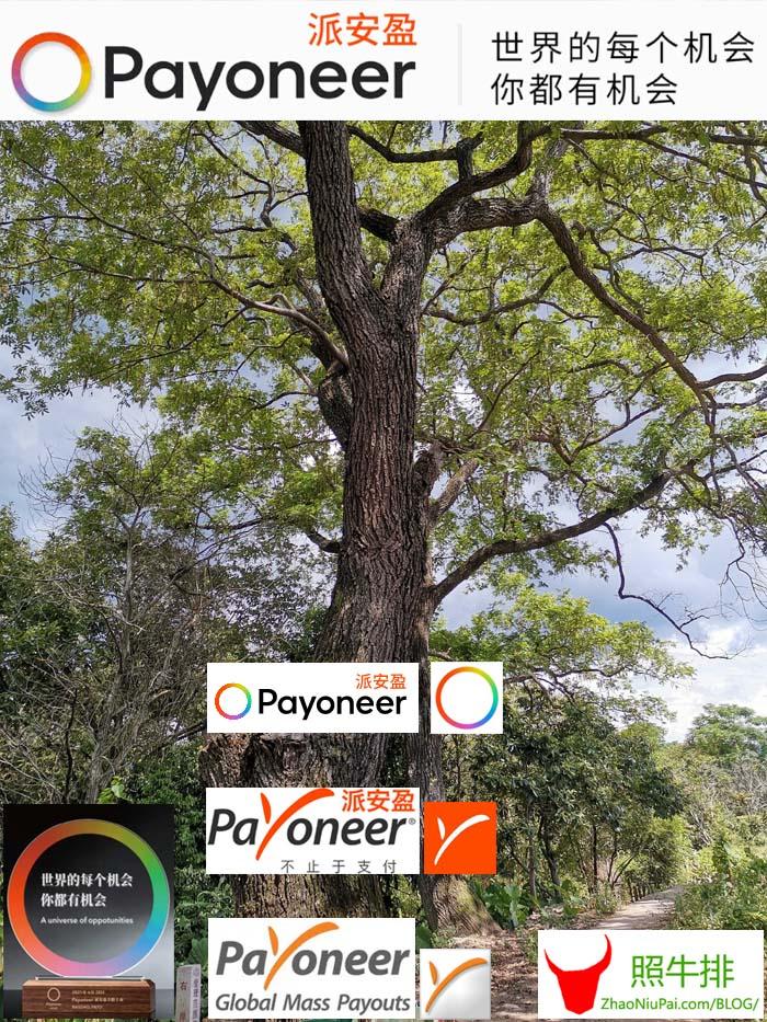 Payoneer-PAYO.jpg